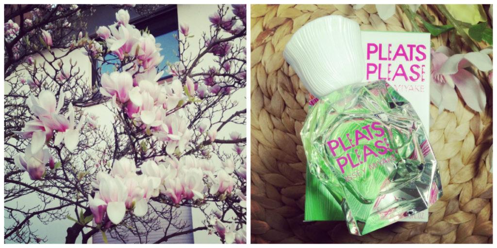Magnolien und Frühlingsparfum