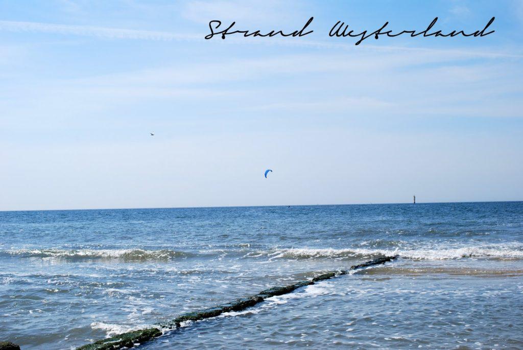 Sylt Strand Westerland Kite Surfer