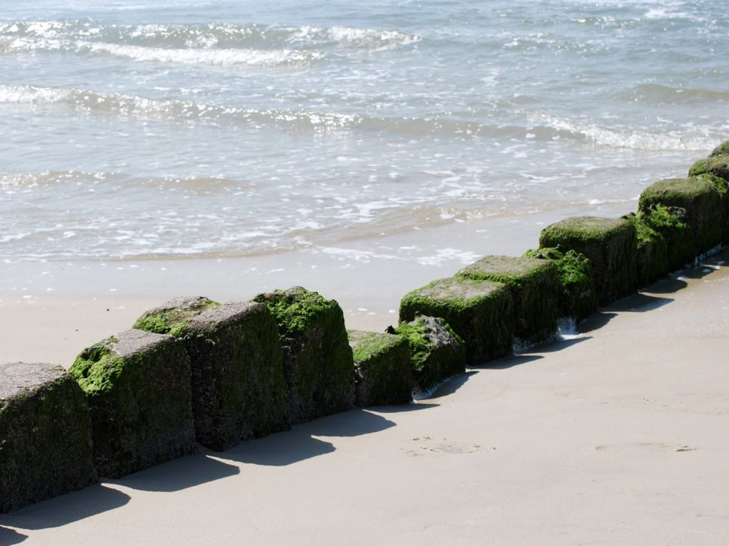 Random Pictures Sommerliebe: Strand