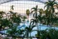 Thermen & Badewelt Sinsheim: Dampfbad Zeremonie und Erfahrungen Palmenparadies Palmen Schwimmbad Sauna