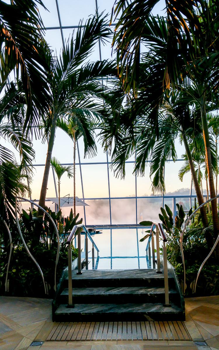 Entspannung in der Thermen & Badewelt Sinsheim im Palmenparadies und der größten Sauna der Welt Südseepalmen