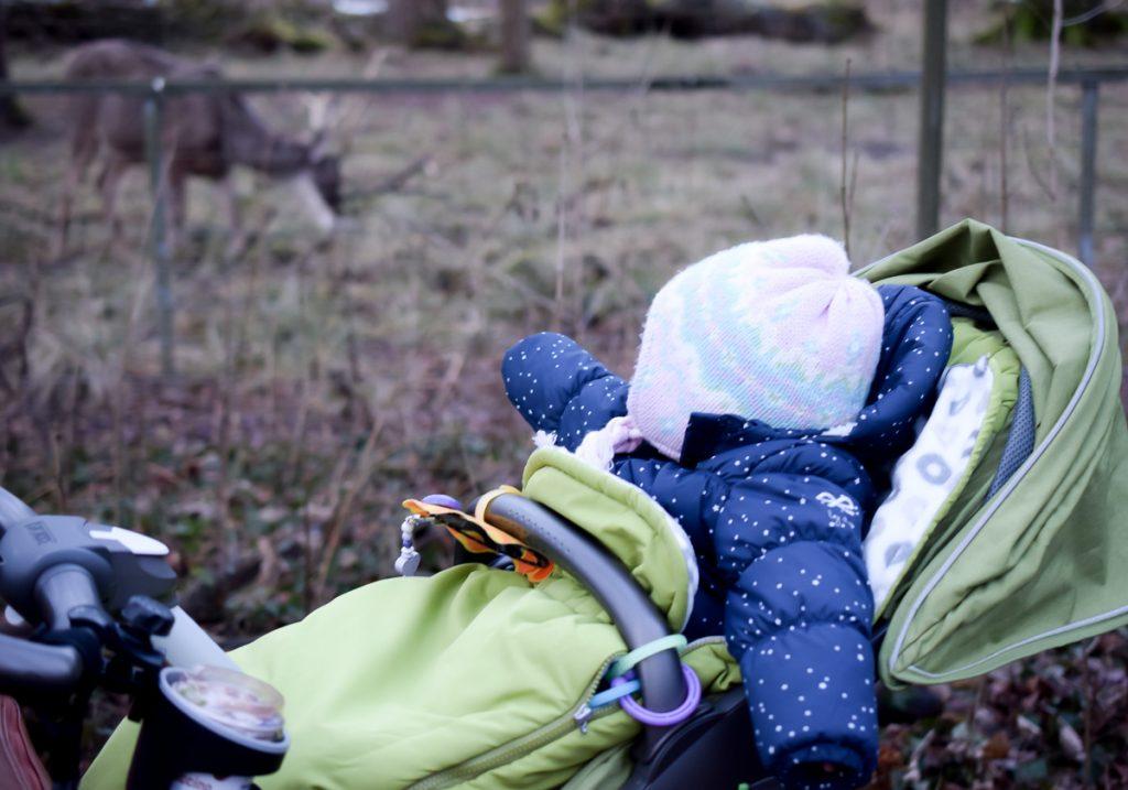 Familienausflug in den Tierpark im Winter mit Kleinkind in den Wildpark Oberwald Karlsruhe Erfahrungen auf I need sunshine Mamablog