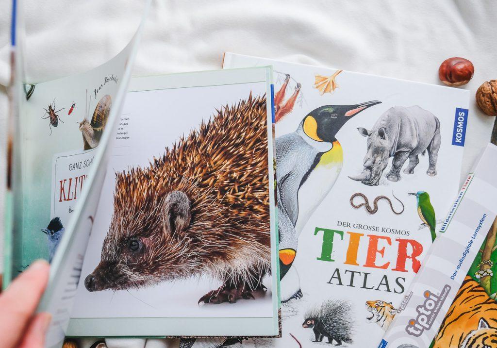Schöne Tierbücher von Kosmos für Kinder Empfehlungen und Tipps Sachbücher auf Mamablog Ineedsunshine