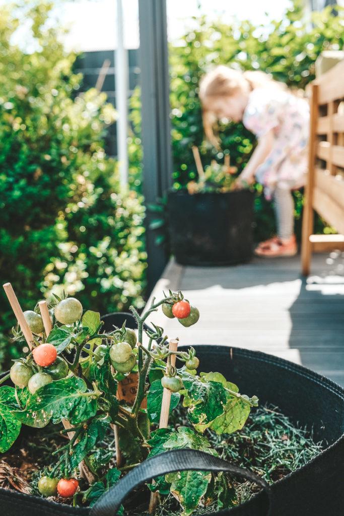 Mit Kindern gärtnern auf Balkon oder Terrasse