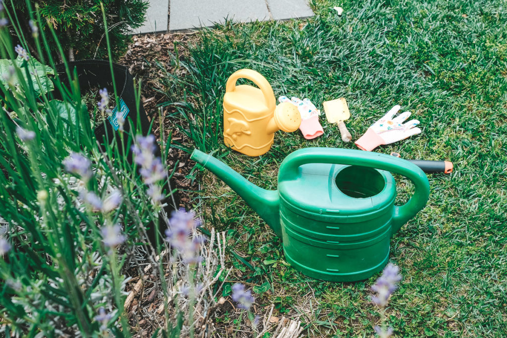 Projekt Gärtnern mit Kindern Tipps