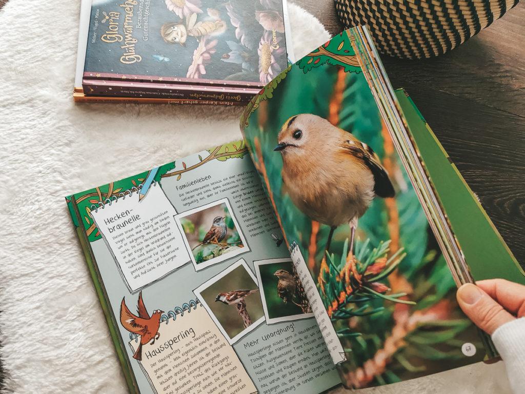 Die Wildnis vor deiner Haustür Kinderbuch ab 4 Jahren