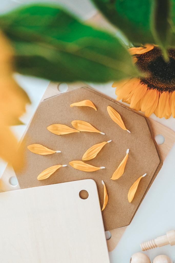 Sonnenblumen Windlicht basteln mit Kindern Anleitung