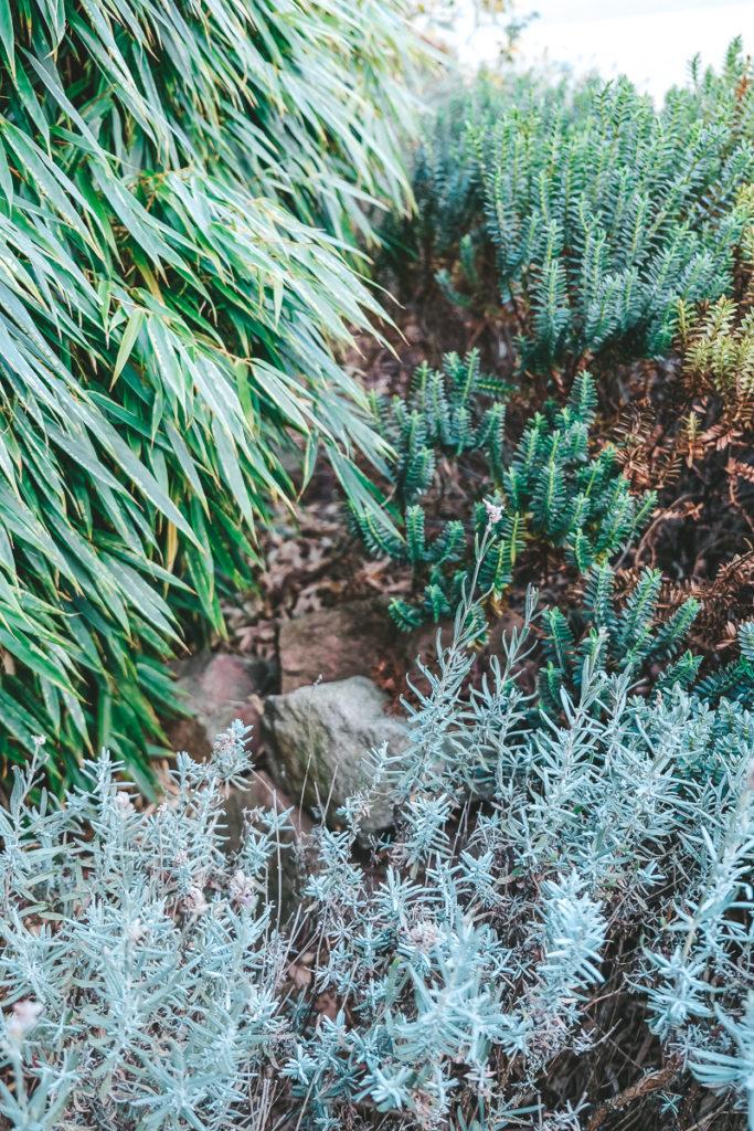 Garten Rückzugsort für Tiere