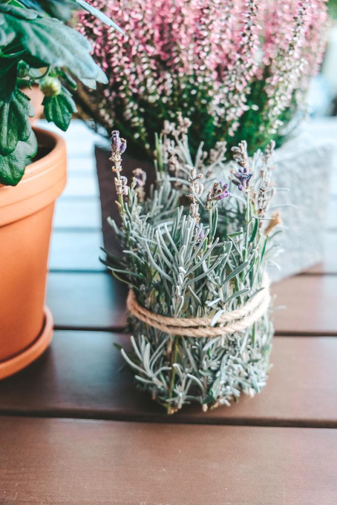 Windlicht basteln mit Lavendel